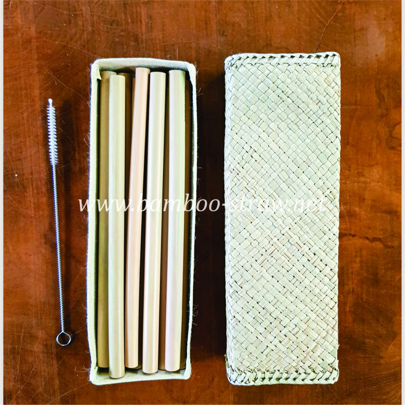 Bamboo Straw Set with Square Pencil Case
